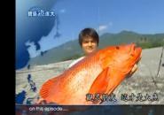 千年巨怪遥控船之父现身《宝岛渔很大》20110731