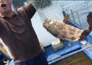 深海船钓大石斑上鱼全过程