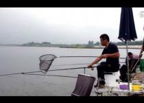 老刘钓鱼定远水库爆钓扁花1000多斤视频